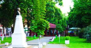 Centrul orașului Chișineu Criș